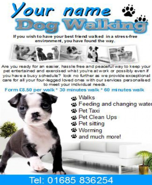 Product picture Dog walking Business Templates