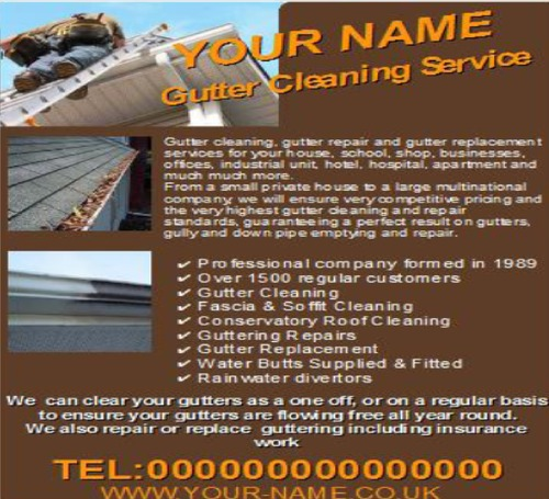 Product picture Gutter Cleaning Business Templates