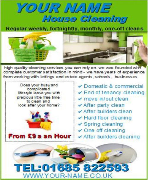 Product picture House Cleaning Business Templates forms